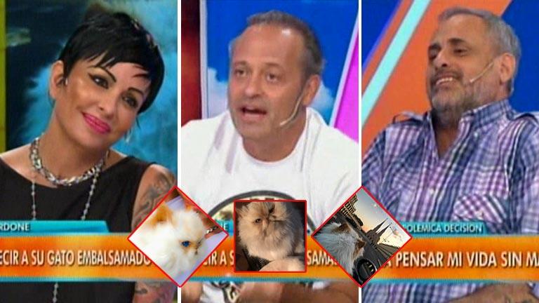 Mirá el el bizarro momento televisivo de Daniela Cardone con Augusto Tartúfoli y Jorge Rial: