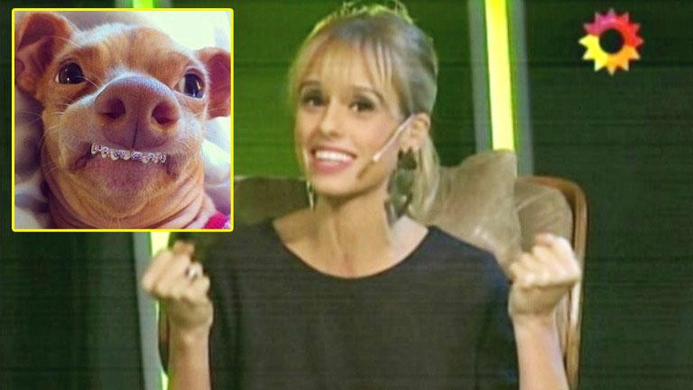 La divertida anécdota de Mariana Fabbiani en El argentino más inteligente