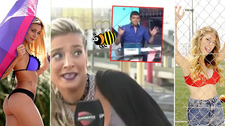 La reacción de Sol Pérez cuando una abeja quiso picarla en vivo... ¡y su encontronazo twittero con Nati Jota!