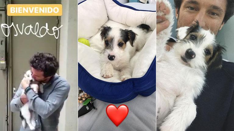 Pico Mónaco presentó al perrito que sumó al hogar que comparte con Pampita