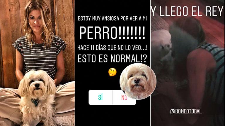 Emotivo reencuentro de Eugenia Tobal con su perro, tras 11 días sin verlo