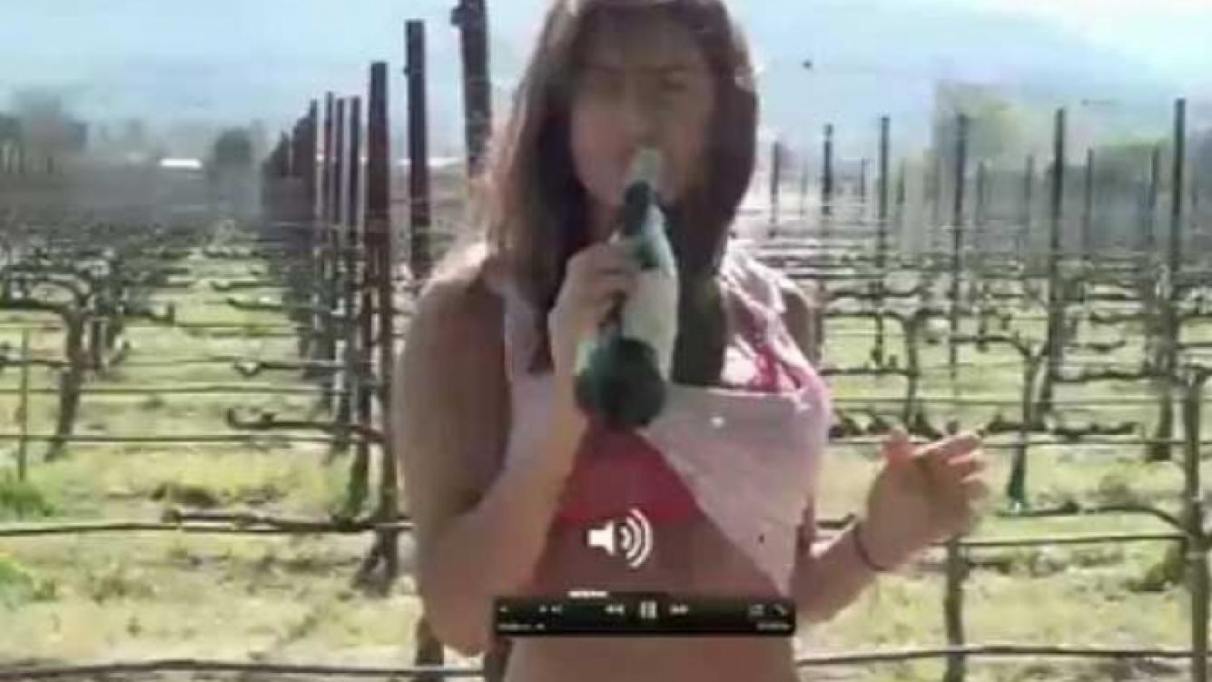 Silvina Luna, en una imagen del comienzo del video. (Imagen: Web)