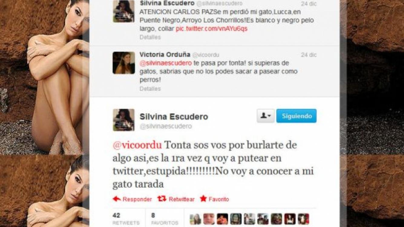 Los tweets de la polémica entre Silvina y una usuaria de la red social (Foto: Captura).