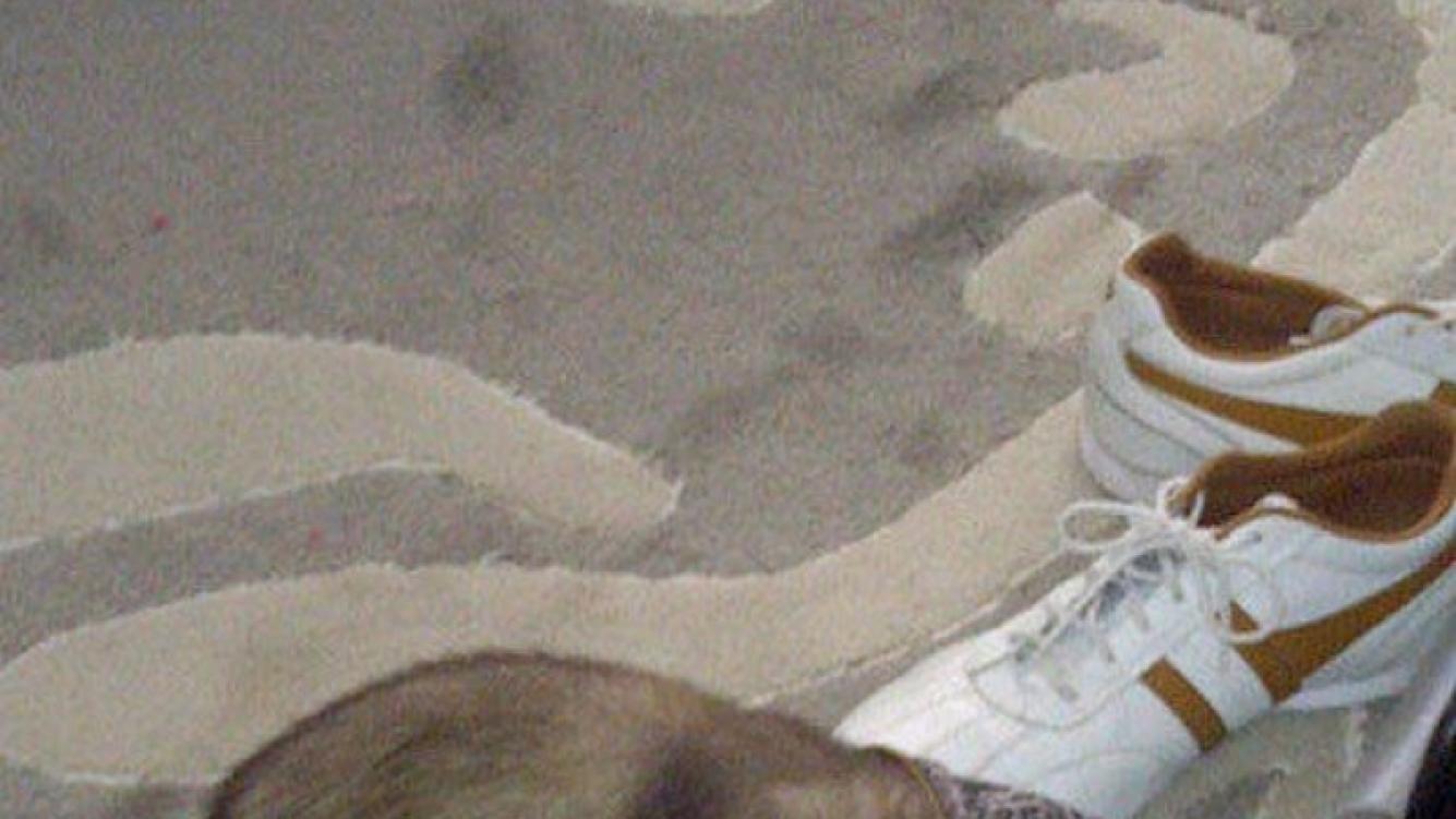 Coco, el travieso hurón de Catherine Fulop (Foto: Twitter).
