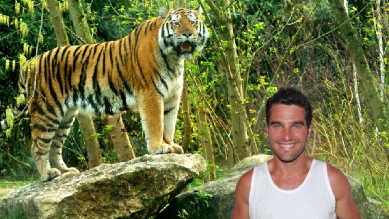 Hernán Drago y su insólito encuentro en la selva con un tigre (Foto: diseño Ciudad.com).