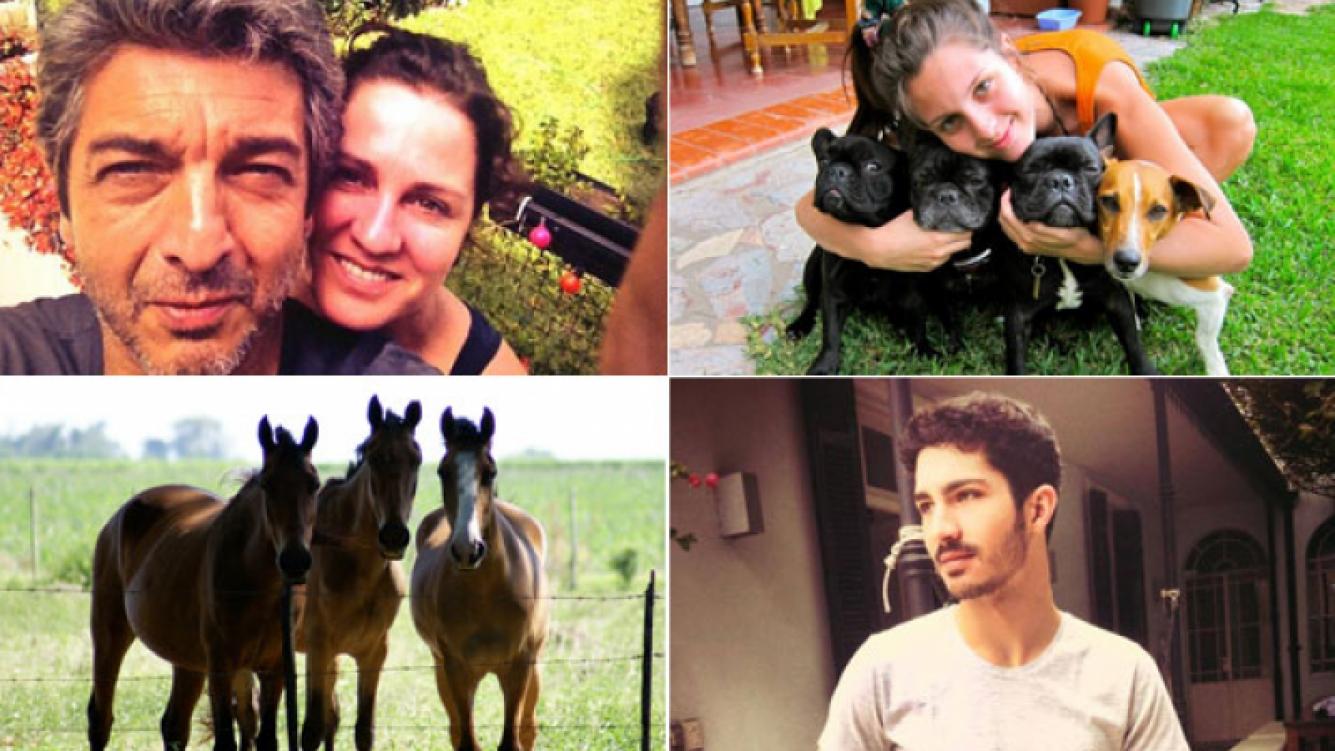 Las fotos de la intimidad de la familia Darín (Fotos: Twitter y Facebook)