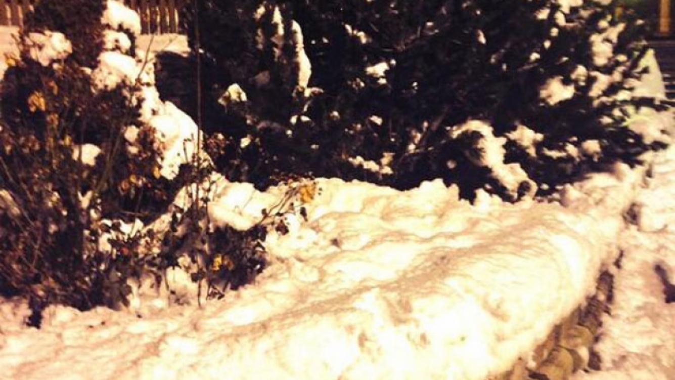 Martina Stoessel y Peter Lanzani se animaron a una guerra de nieve (Fotos: Twitter).