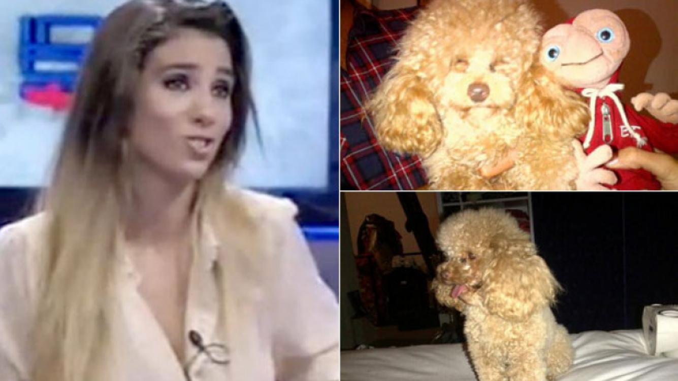 Cinthia Fernández y un desesperado ruego por su perro. (Foto: Twitter)