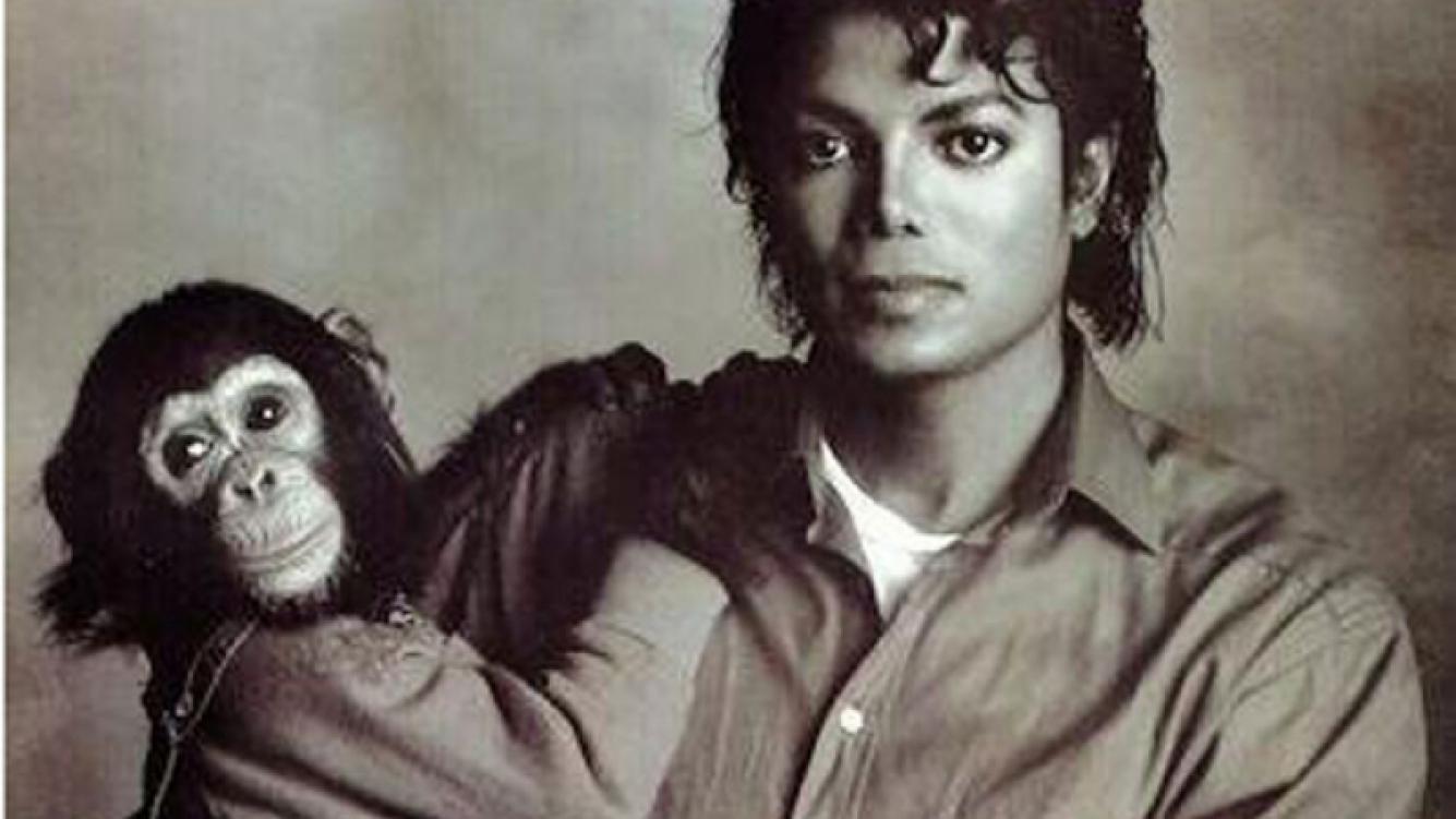 Aseguran que Michael Jackson maltrataba a su chimpancé. (Foto: Web)