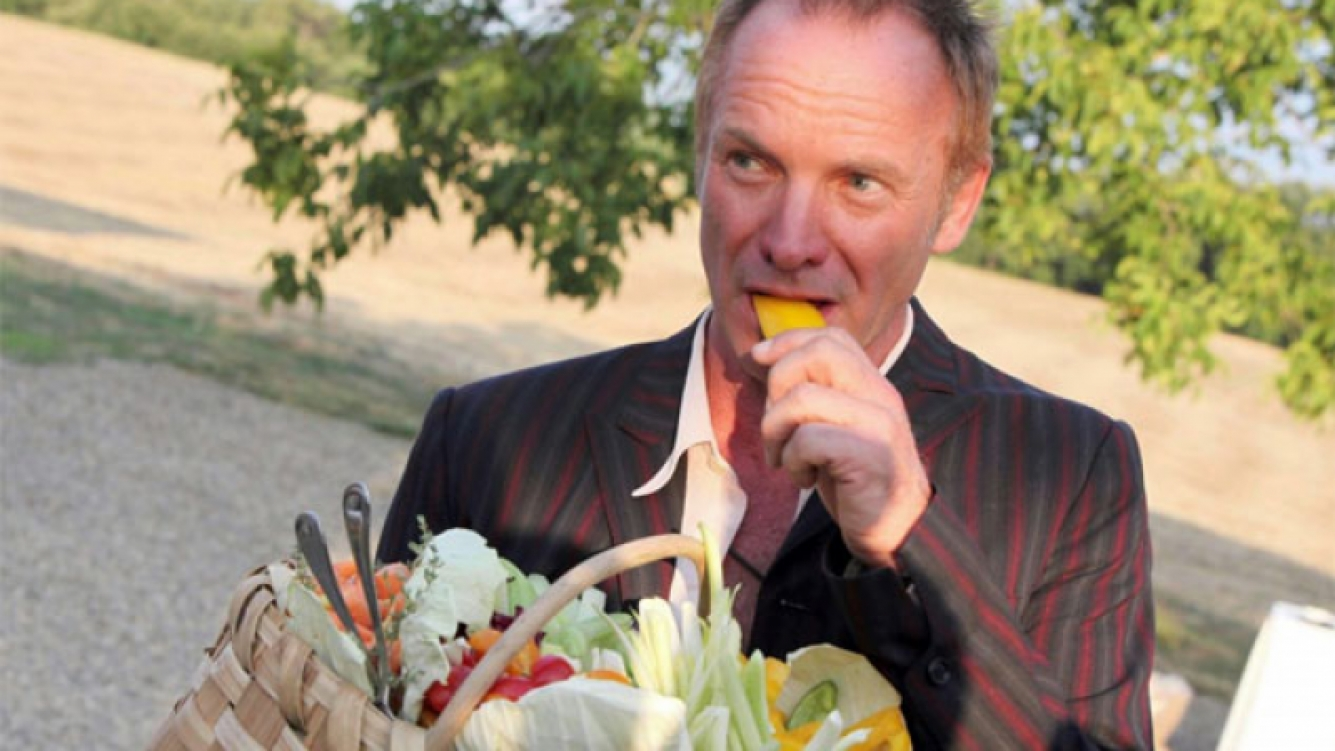 ¡Un vivo bárbaro! Para trabajar en la finca de Sting juntando uvas hay que pagarle 262 euros. (Foto: Web)