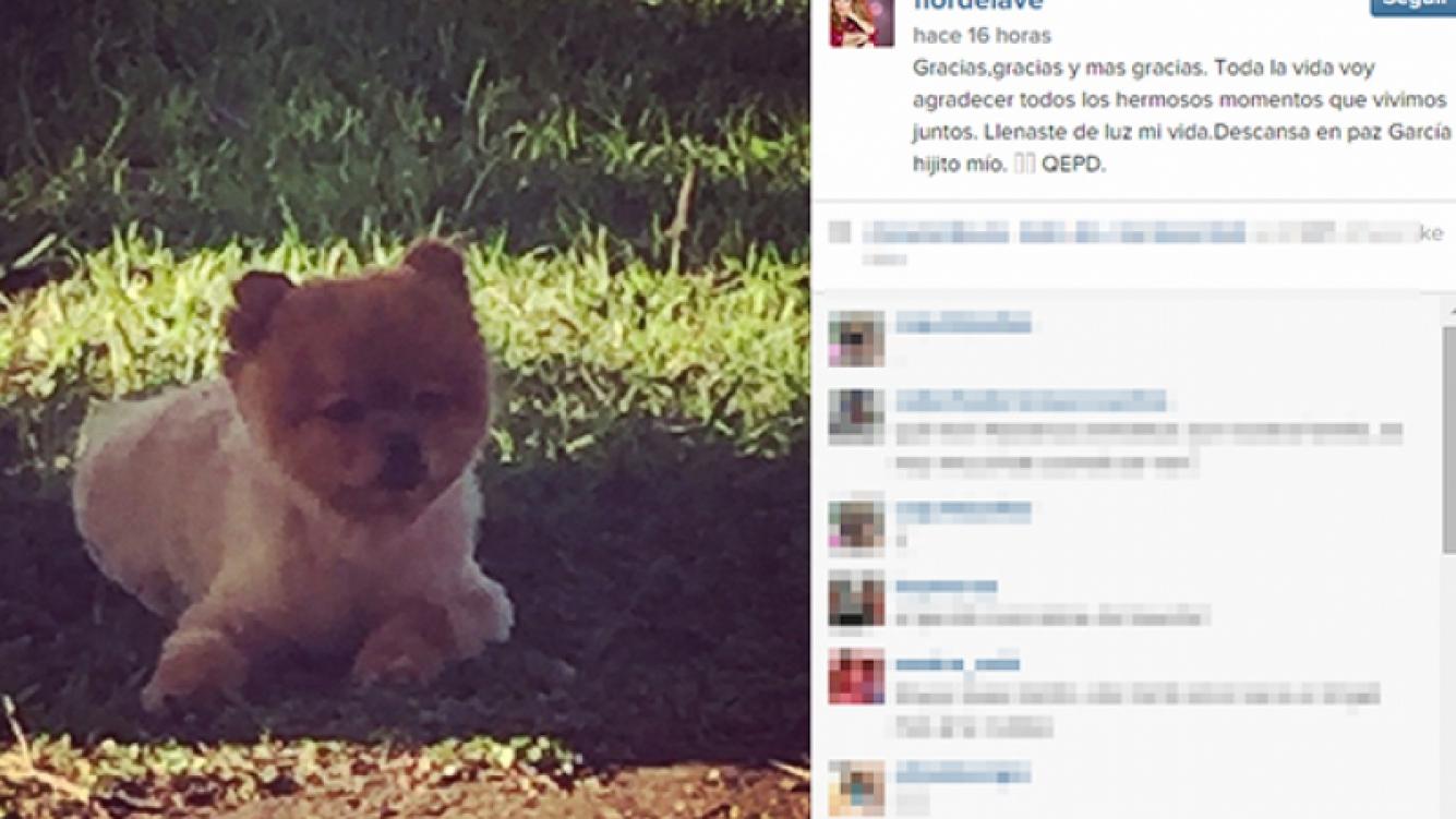 Flor de la Ve, triste por la muerte de su mascota (Fotos: Web).