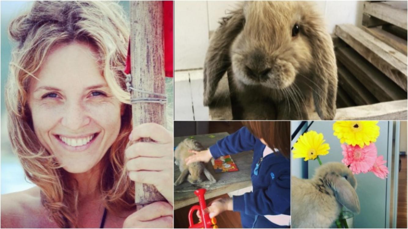 Carla Peterson, muerta de amor por Ricardo, el conejito de su hijo. Foto: Instagram