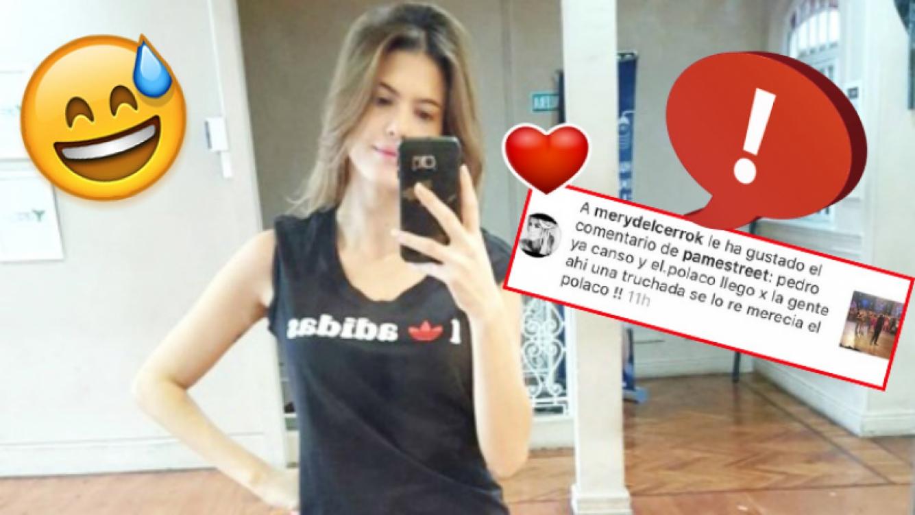 """Mery del Cerro le dió """"me gusta"""" a un picante mensaje por error y tuvo que salir a aclararlo (Foto: Instagram)"""