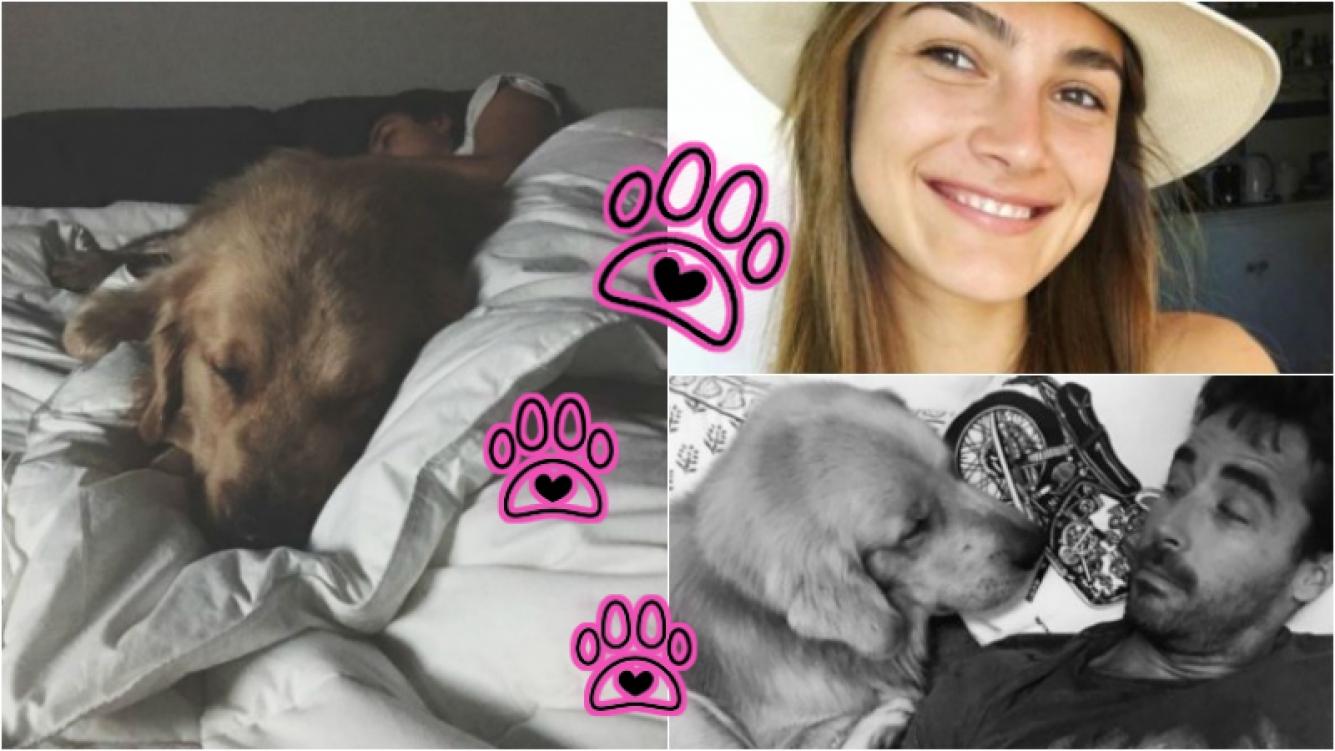 La divertida queja de Nacho Viale al ver a su novia durmiendo con su perro. Foto: Instagram