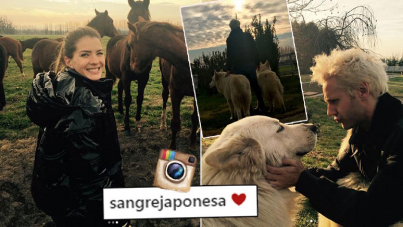China Suárez y Vicuña, amor campestre rodeados de animales.