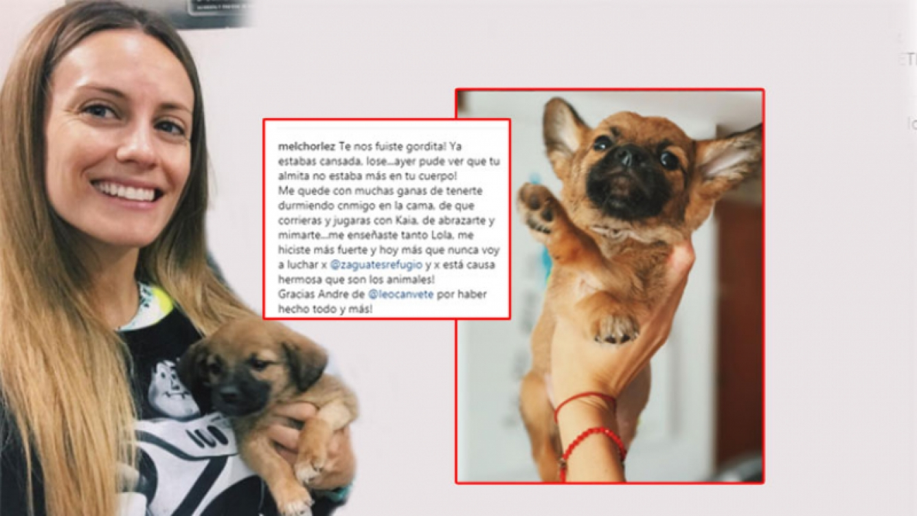 La tristeza de Melina Lezcano por la muerte de su perrita Lola