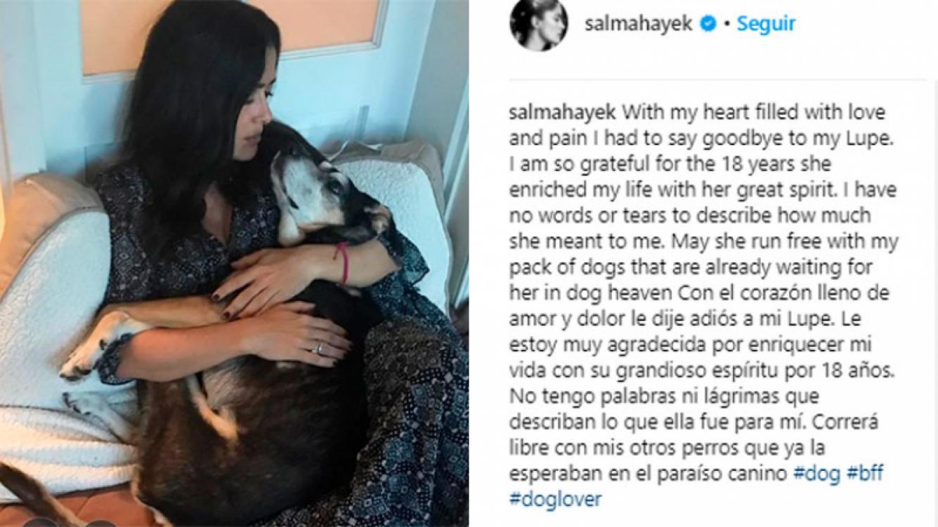 Salma Hayek está devastada por la muerte de su perrita Lupe