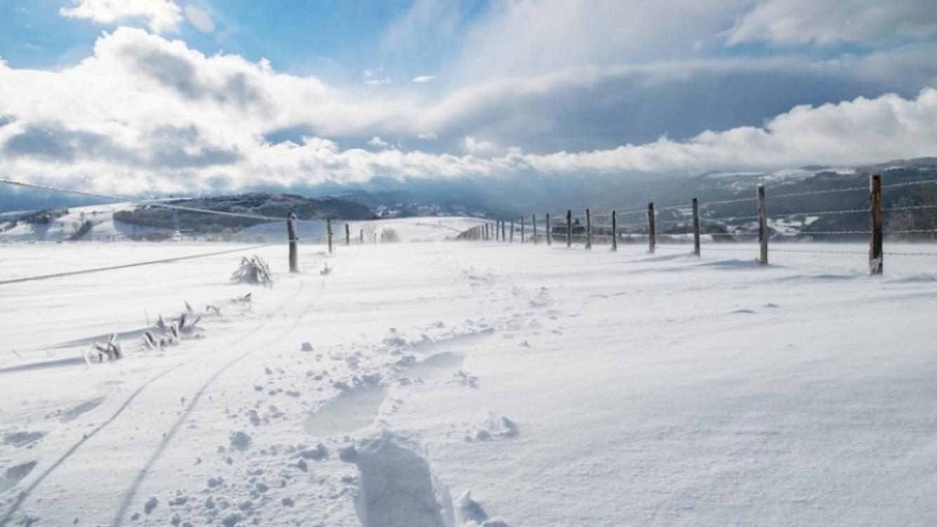 Extrañas figuras aparecieron en la nieve