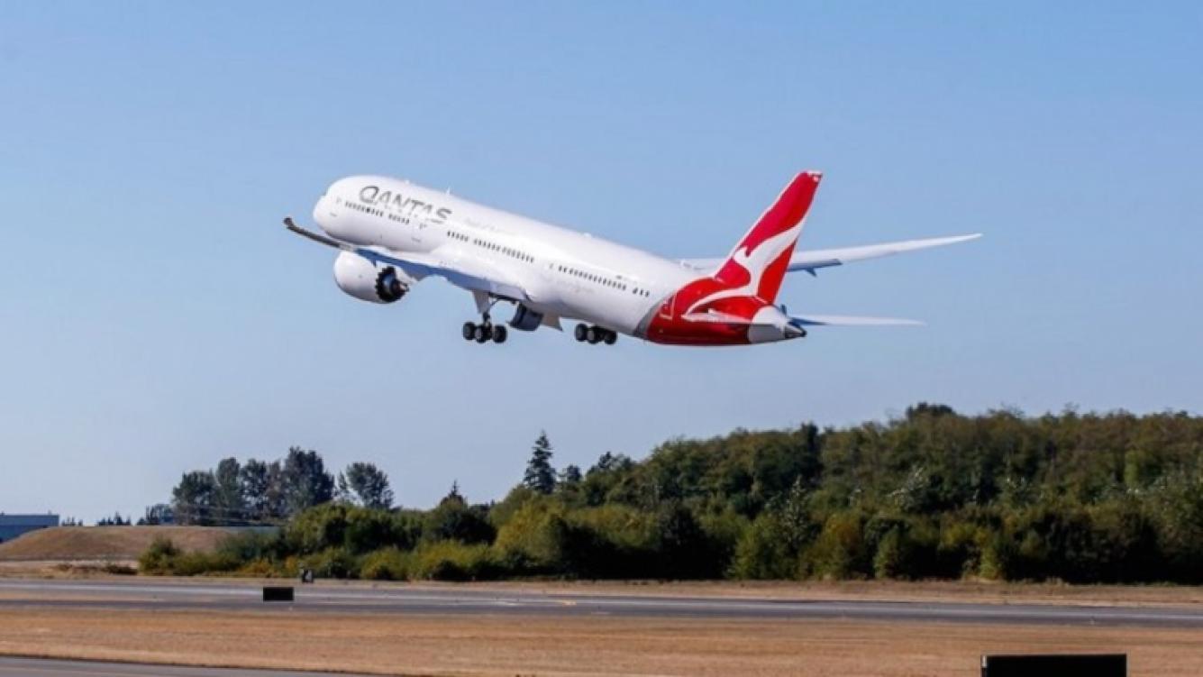 Avión voló por primera vez con un combustible hecho con semillas de mostaza
