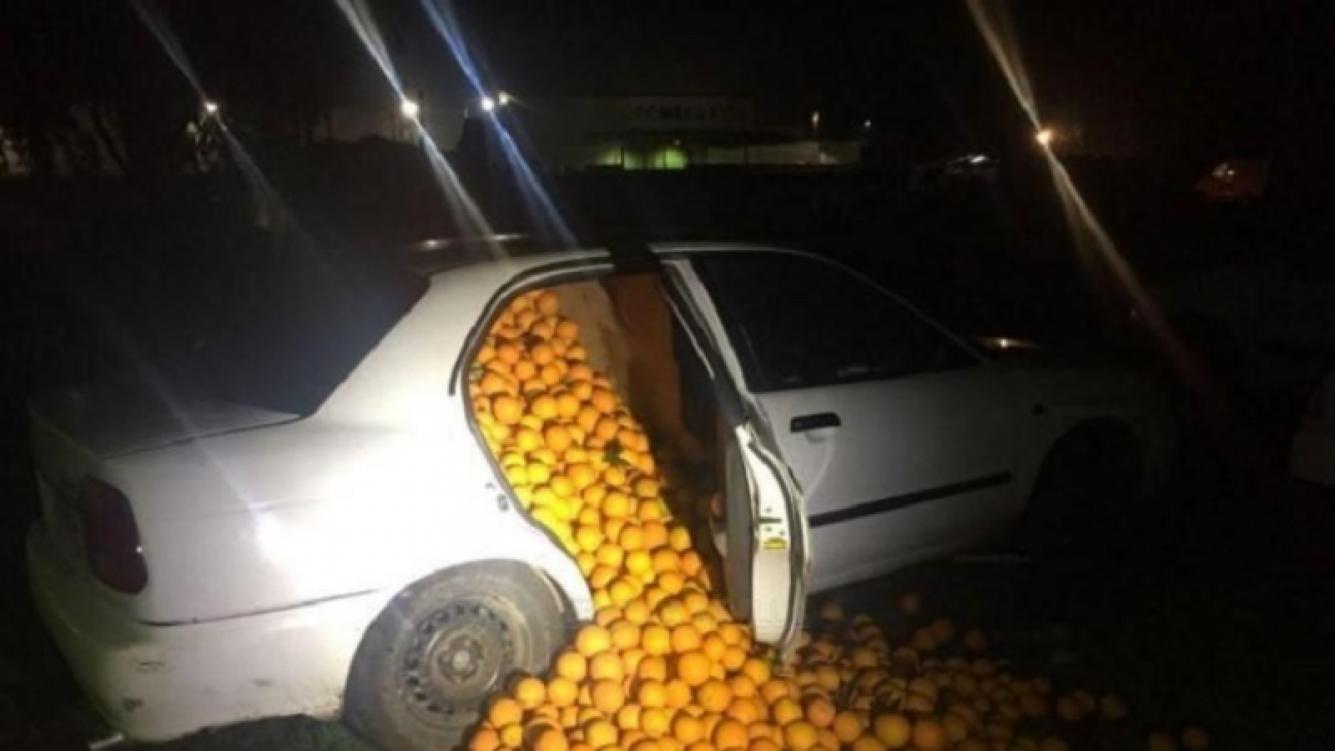Se robaron un montón de naranjas y los delató su forma de conducir