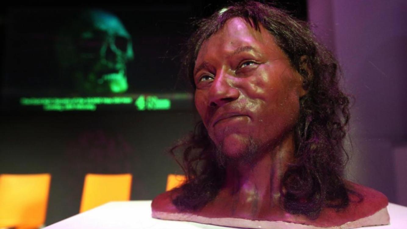 ADN demostró que la raza británica es de piel oscura y ojos azules
