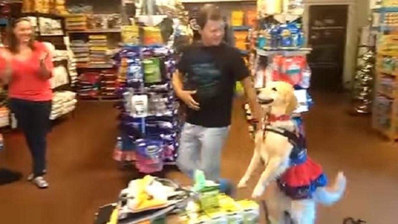 Un perrito bailó salsa y sorprendió en las redes sociales