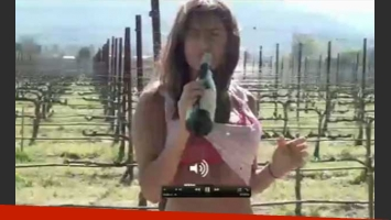 Una imagen del comienzo del video prohibido. ¿Es Silvina Luna? (Foto: Web)