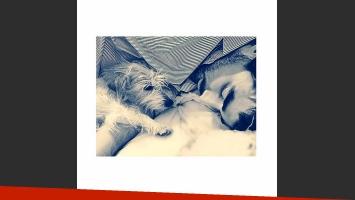 Los dos amores de Candelaria Tinelli durmiendo en su cama (Foto: Instagram)