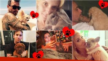 ¡Amor animal! Los famosos y sus mascotas en Instagram. Foto: Instagram