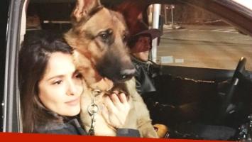 El dolor de Salma Hayek: mataron a su perro (Foto: Instagram)