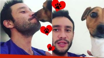 El tierno video de Luciano Pereyra, tras ser operado, junto a su perro Rocky. Foto: Captura