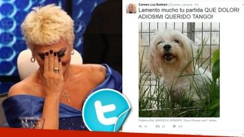 El dolor de Carmen Barbieri por la muerte de su perro