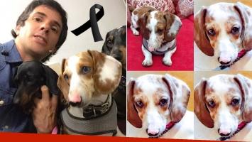 El dolor de Robertito Funes por la muerte de su perrita