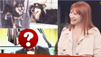 El particular nombre de un famoso que Matilda Blanco le puso a su perro (Fotos: Captura y Web)