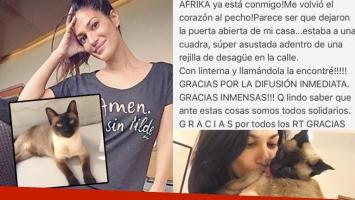 Silvina Escudero: perdió a su gata, la buscó intensamente ¡y la encontró! (Foto: Instagram)