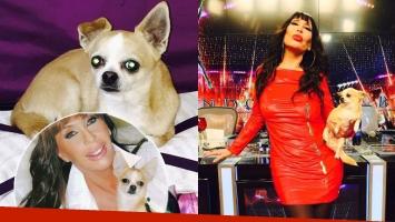 El dolor de Moria Casán tras la muerte de Kristobal, su chihuahua: