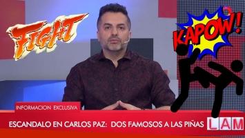 Los famosos que se agarraron a las piñas en Punta y Carlos Paz