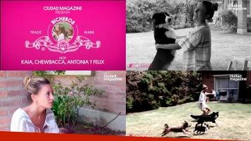 #Bicheros: hoy, los cuatro perros de Melina Lezcano