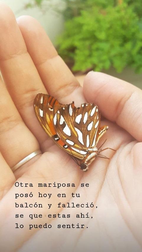"""El sentido posteo de la hija de Natacha Jaitt: """"Otra mariposa se posó hoy en tu balcón y falleció; sé que estás ahí"""""""